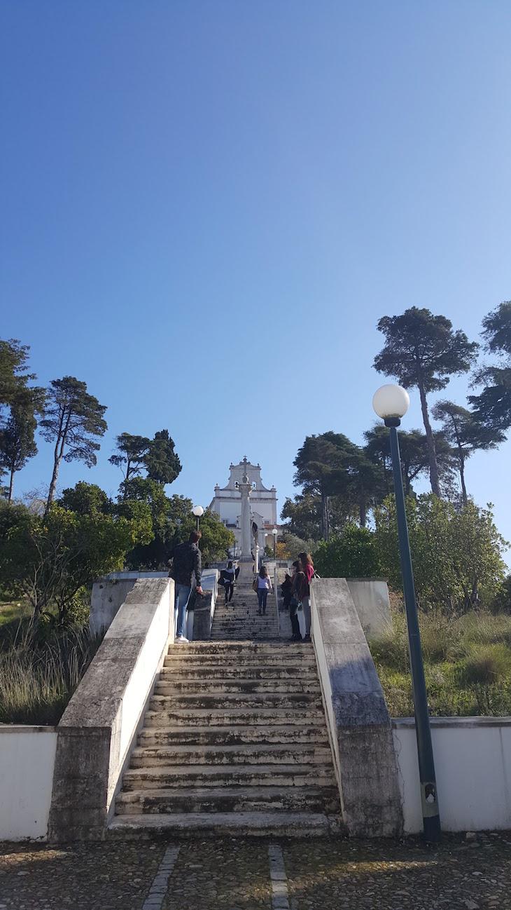 Subida para o Santuário de Nossa Senhora da Encarnação, Leiria © Viaje Comigo