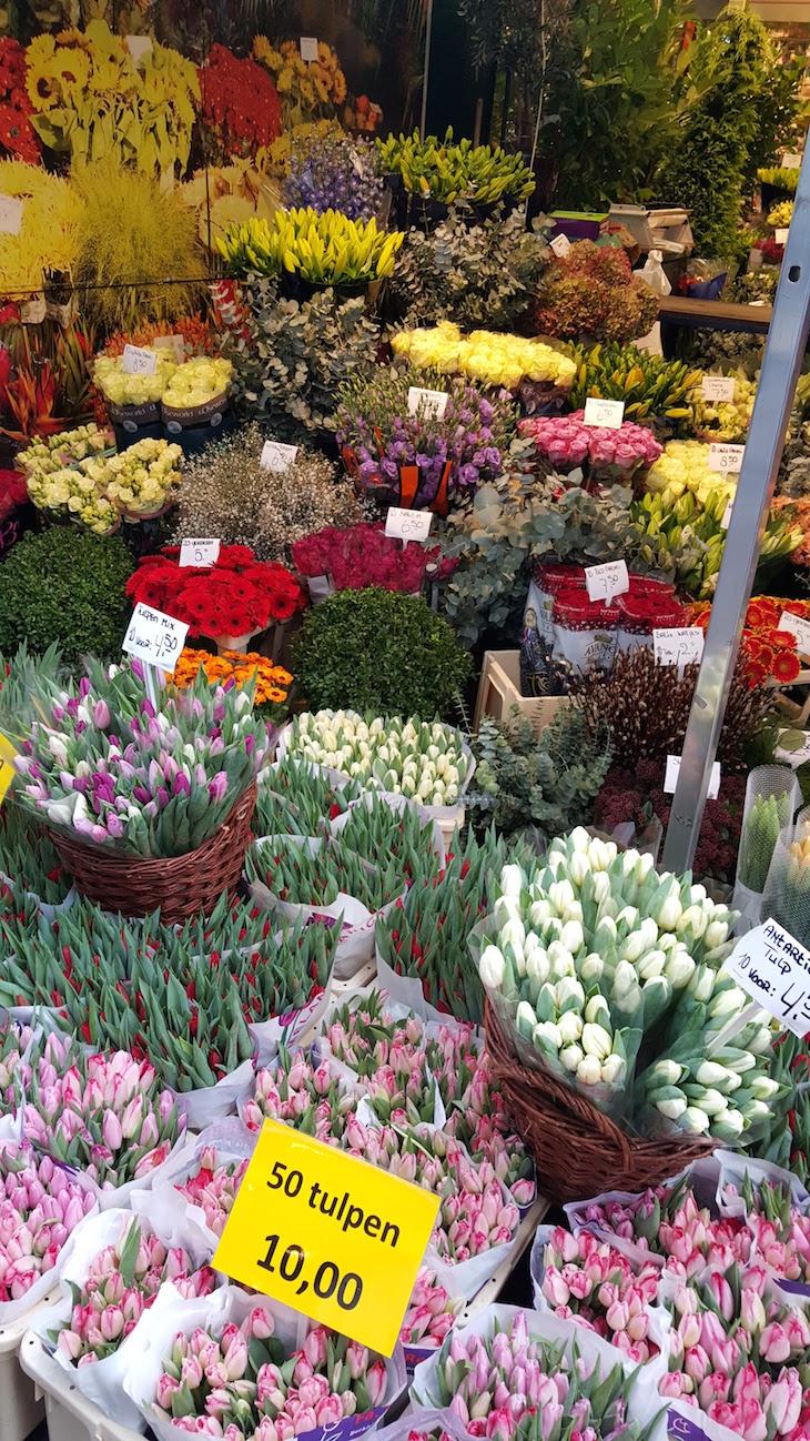 Tulipas no Bloemenmarkt - Mercado de Flores em Amesterdão © Viaje Comigo