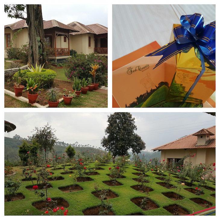 County Tea, Munnar, Kerala © Viaje Comigo