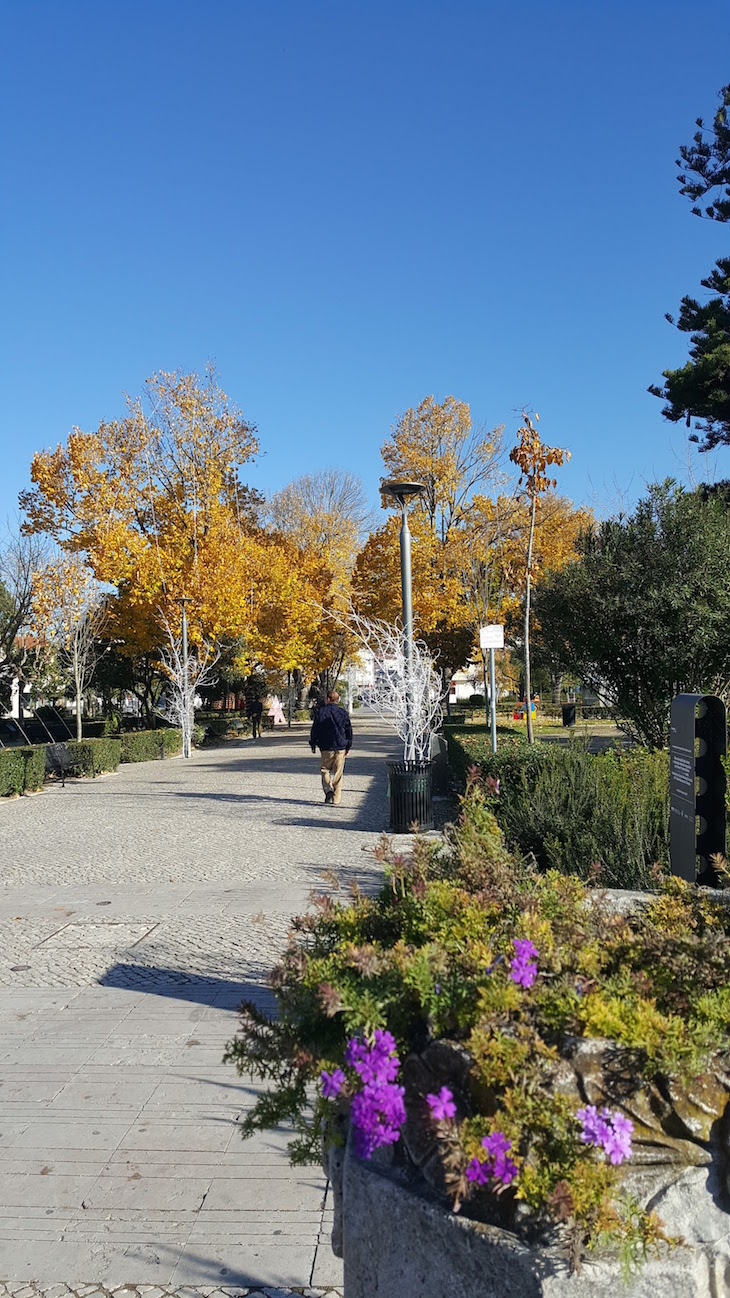 Jardim no centro de Leiria © Viaje Comigo