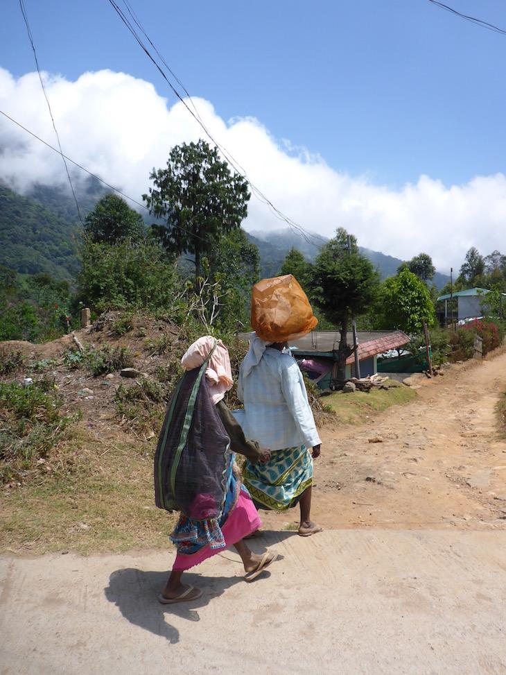 Mulheres a irem para as plantações de chá © Viaje Comigo