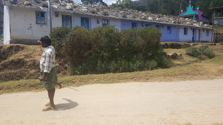 Papathy Shola, Munnar, Kerala © Viaje Comigo