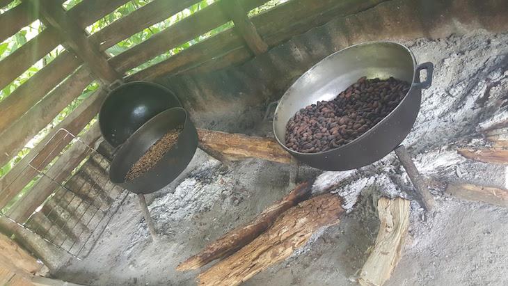 Torrar o café - República Dominicana © Viaje Comigo