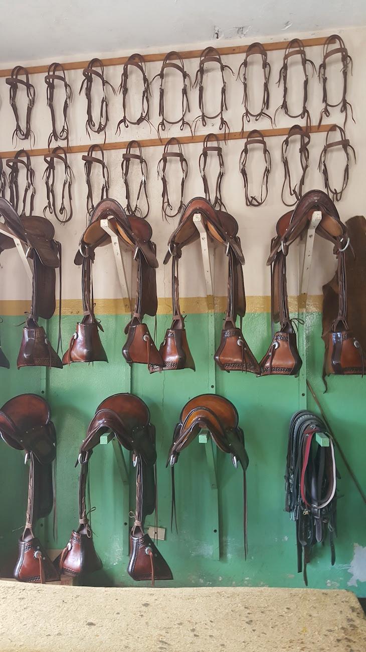 Selas de cavalos em Higuey - República Dominicana © Viaje Comigo