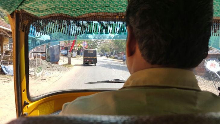 Kerala © Viaje Comigo