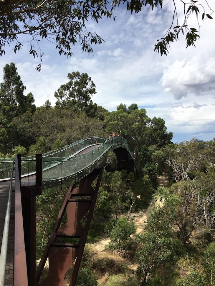 Kings Park - Perth DR