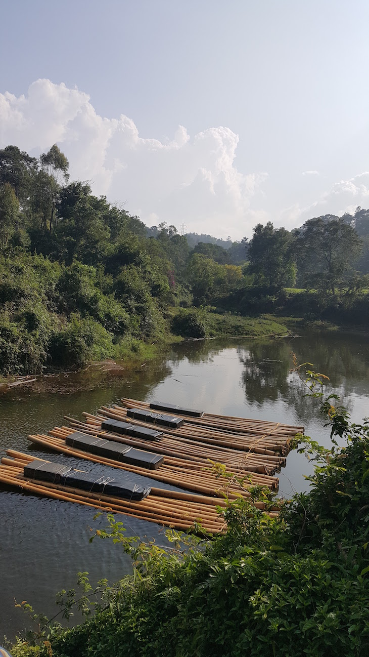 Bamboo Rafting, Kerala © Viaje Comigo