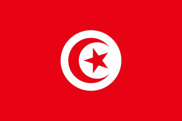 Bandeira Tunísia DR
