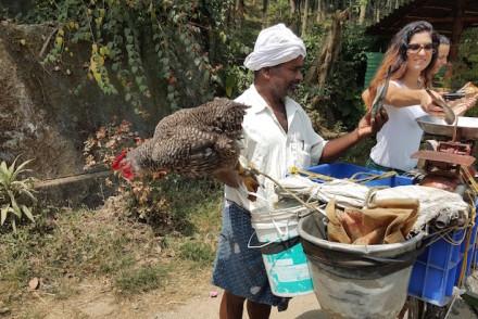 Vendedor de peixe, Thrikkaipetta, Wayanad, Kerala © Viaje Comigo