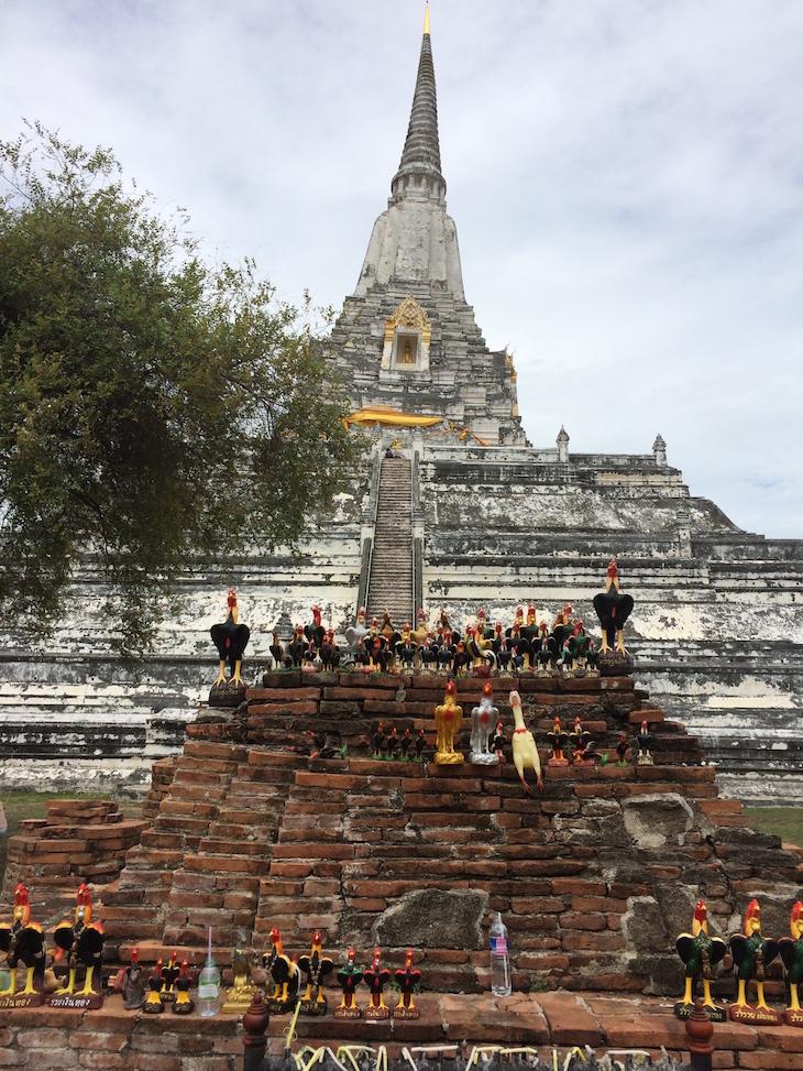 Galos em Wat Phu Khao Thong, Ayutthaya, Tailândia © Viaje Comigo