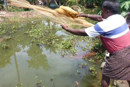 Pesca tradicional em Kumarakom, Kerala © Viaje Comigo