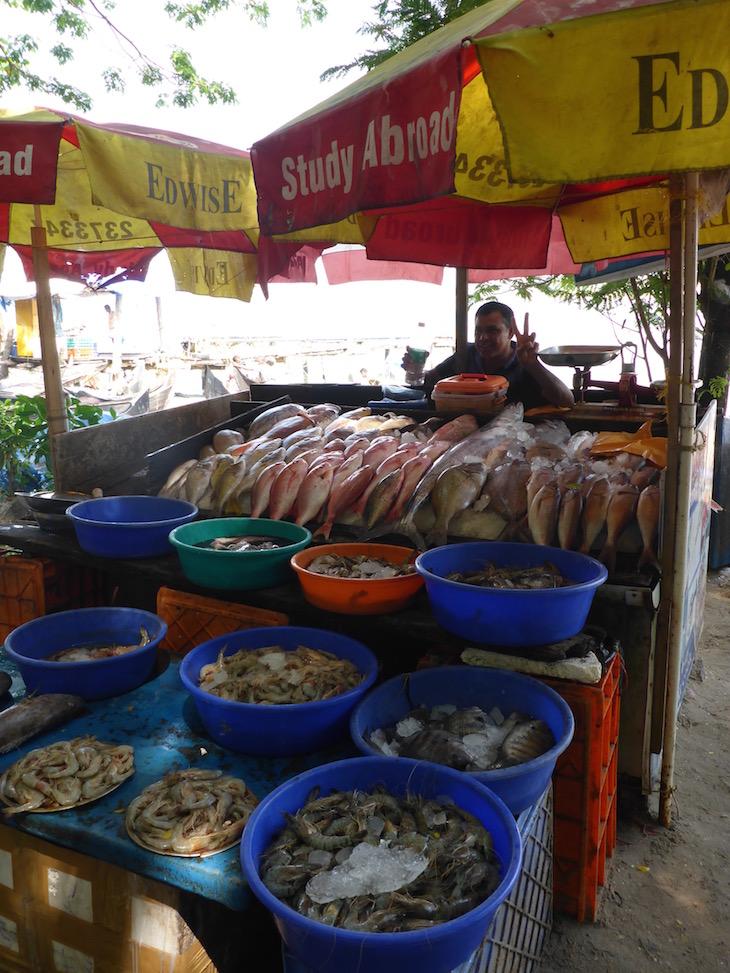 Vendedor de peixe no Porto de Cochim, Kerala, India © Viaje Comigo