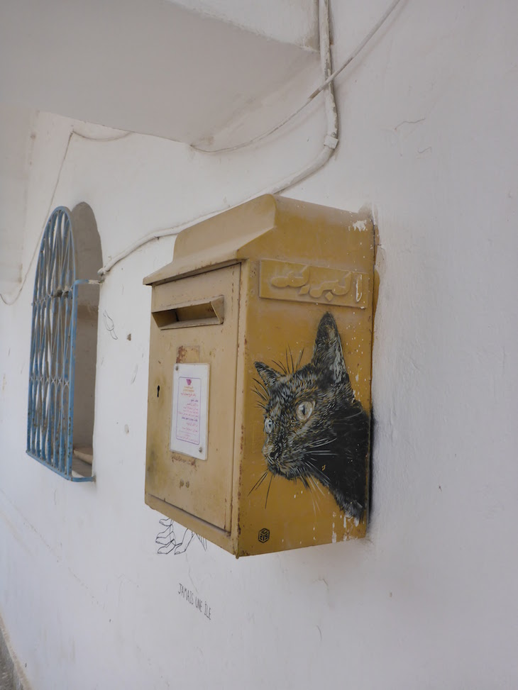 Artista: C215, Djerbahood, Erriadh, Djerba, Tunisia © Viaje Comigo