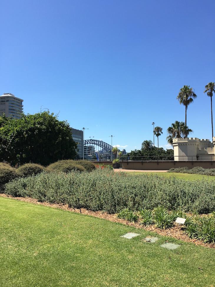 Royal Botanic Gardens - Direitos Reservados