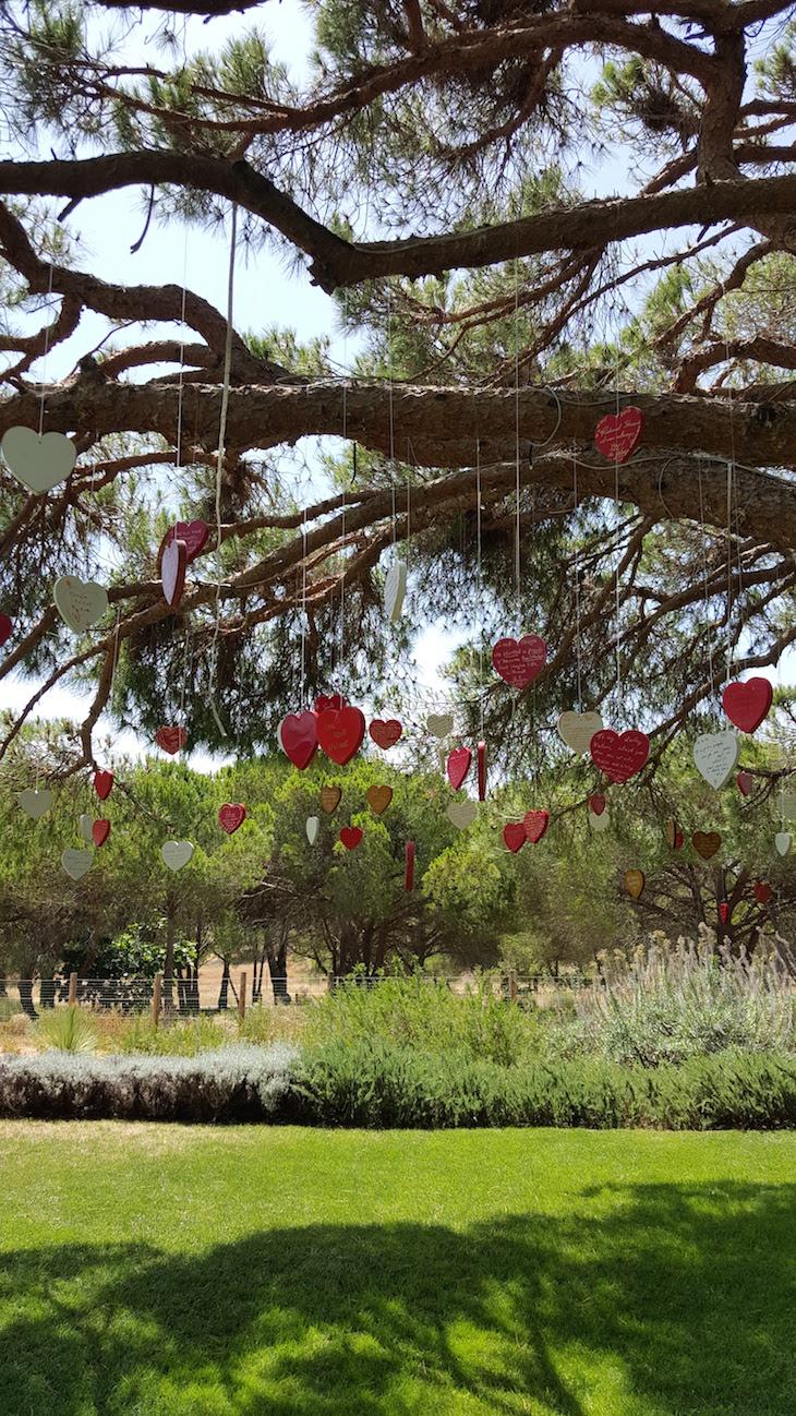 Árvore do Amor no Epic Sana Algarve © Viaje Comigo