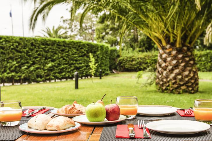 Jardim no Terraço do Ibis Porto Gaia - DR
