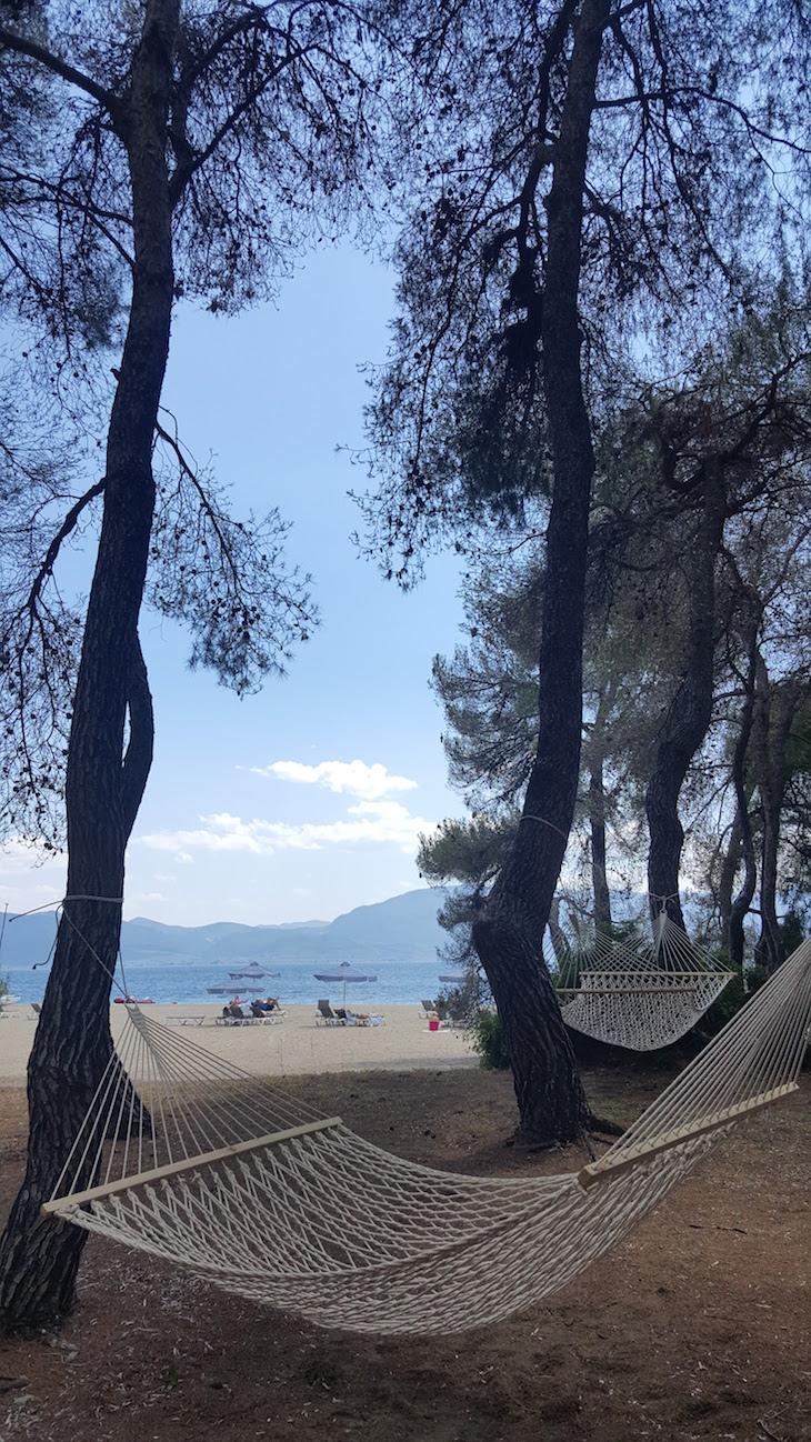 Pinhal com redes - Club Med Gregolimano © Viaje Comigo