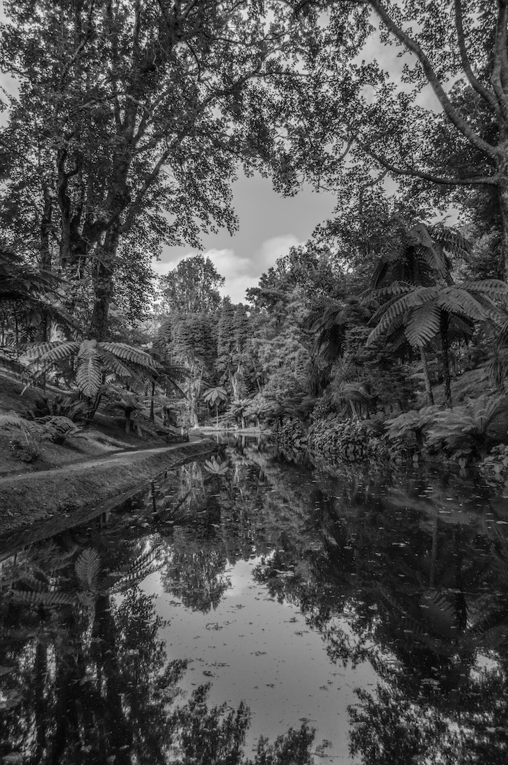 Parque Terra Nostra - Foto: ©Ines Marques