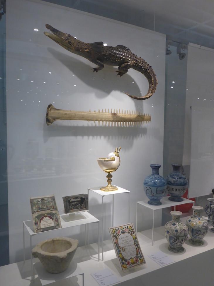 Crocodilo no Museu da Farmácia © Viaje Comigo