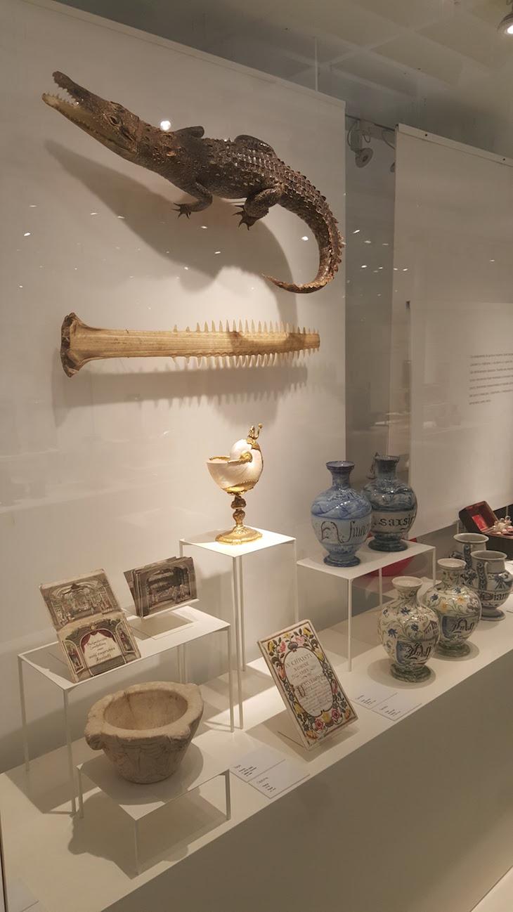 Museu da Farmácia © Viaje Comigo