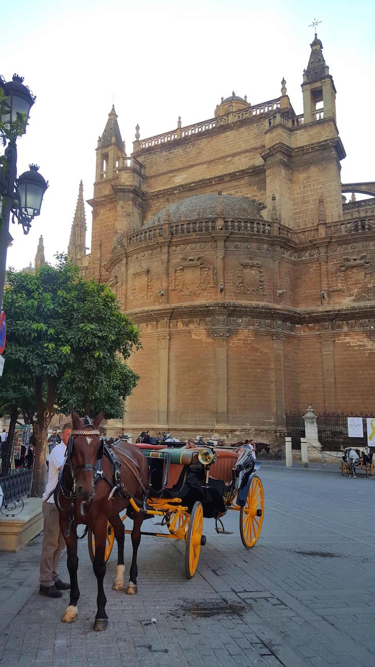 Cavalos frente à Catedral de Sevilha © Viaje ComigoCavalos frente à Catedral de Sevilha © Viaje Comigo