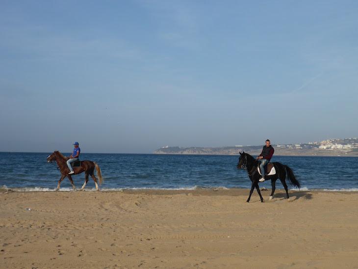 Cavalos na praia - Tânger Marrocos © Viaje Comigo