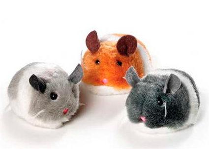 Rato tremeliques de corda para gatos © DR