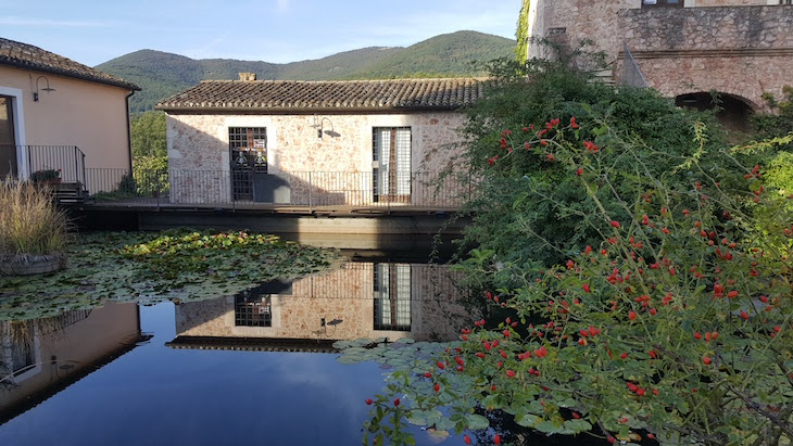 Tenuta dei Cilamini - Itália © Viaje Comigo