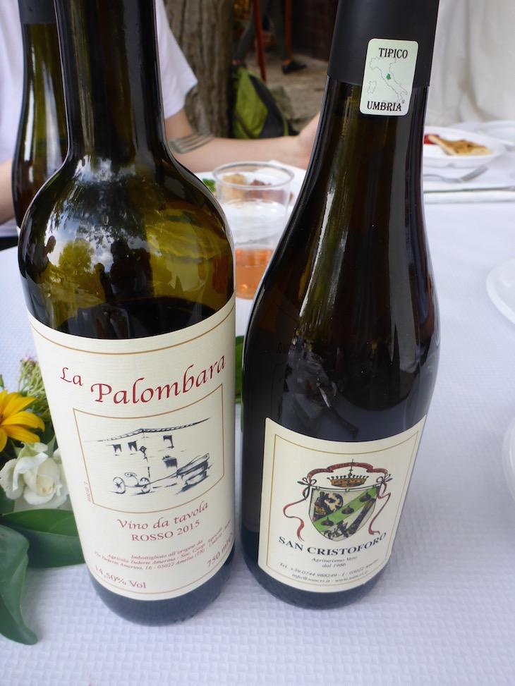 Vinhos de Umbria - Itália © Viaje Comigo