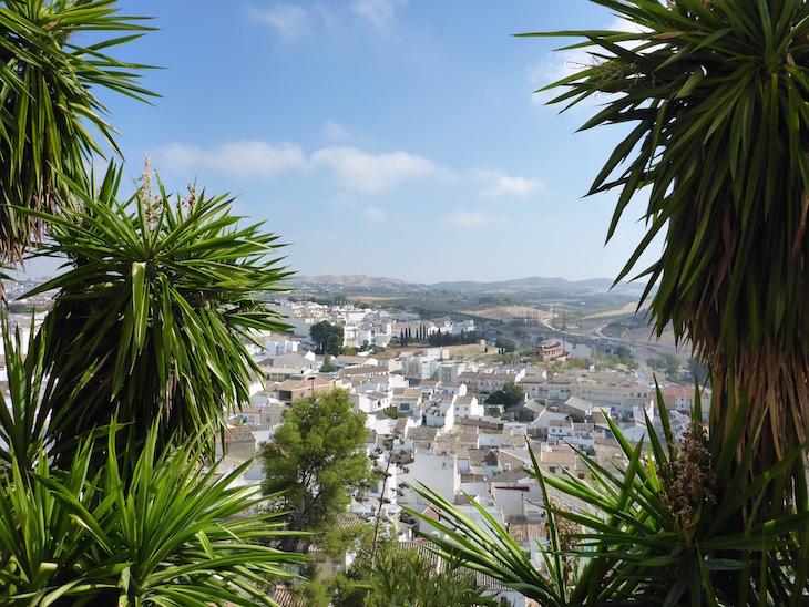 Vista de Baena © Viaje Comigo