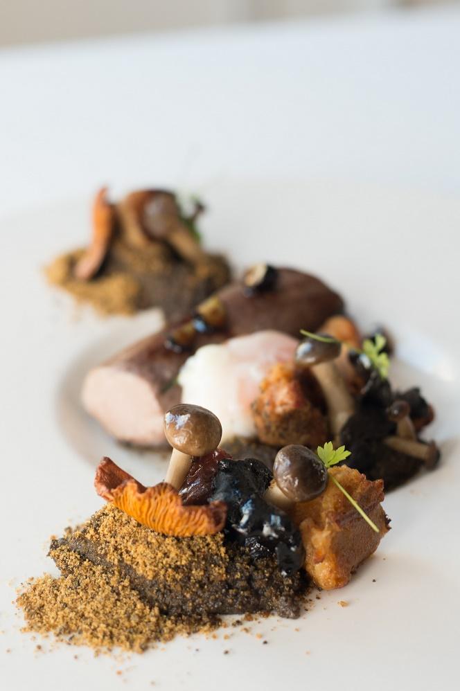 Lombinho de javali confitado e alheira no bosque com cogumelos e molho de mirtilo - DR