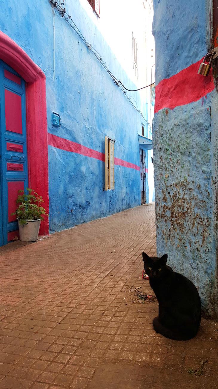 Medina de Rabat, Marrocos © Viaje Comigo