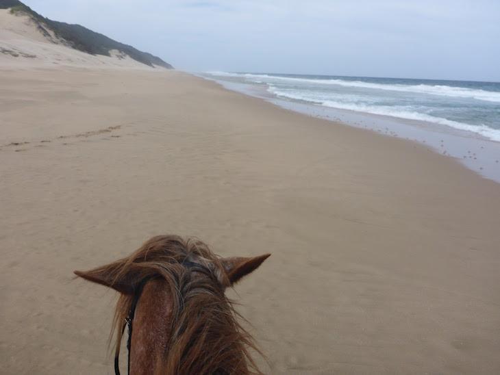Passeios a cavalo - White Pearl - Ponta Mamoli - Moçambique © Viaje Comigo