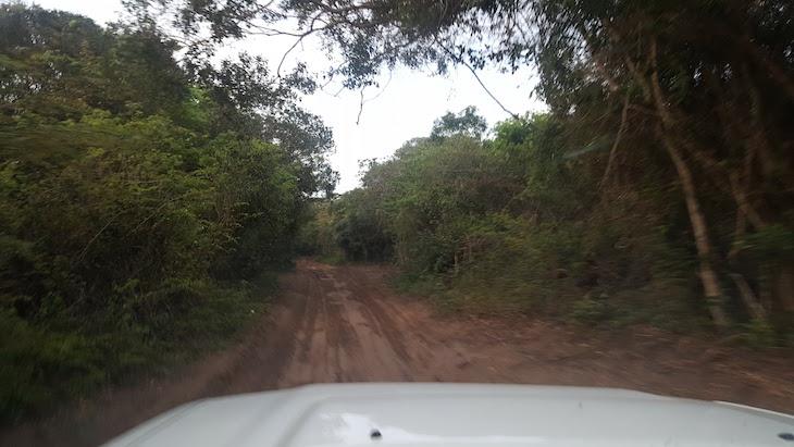 Terra batida para Ponta do Ouro - Moçambique © Viaje Comigo