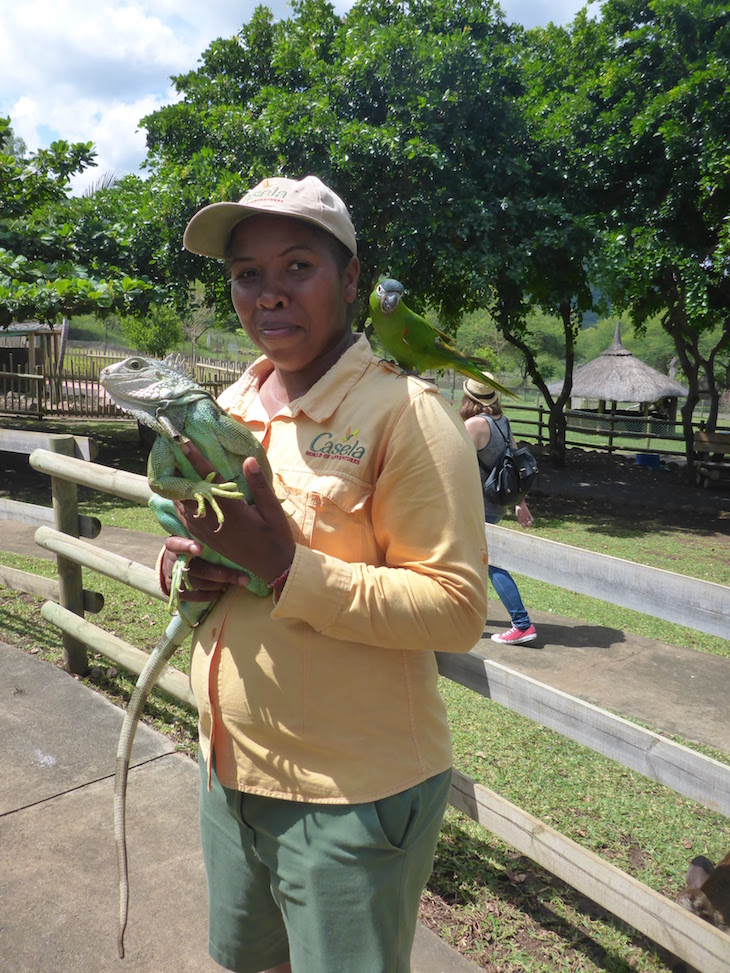 Tratadora de animais no Casela World of Adventures - Maurícias © Viaje Comigo