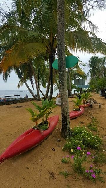 Boca del Drago, Bocas del Toro, Panamá © Viaje Comigo