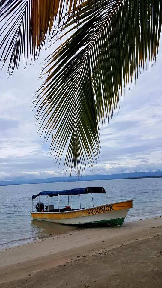 Playa de las Estrellas, Isla Colón, Panamá © Viaje Comigo