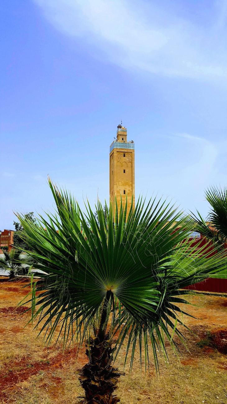 Mesquita em Berkane - Marrocos © Viaje Comigo