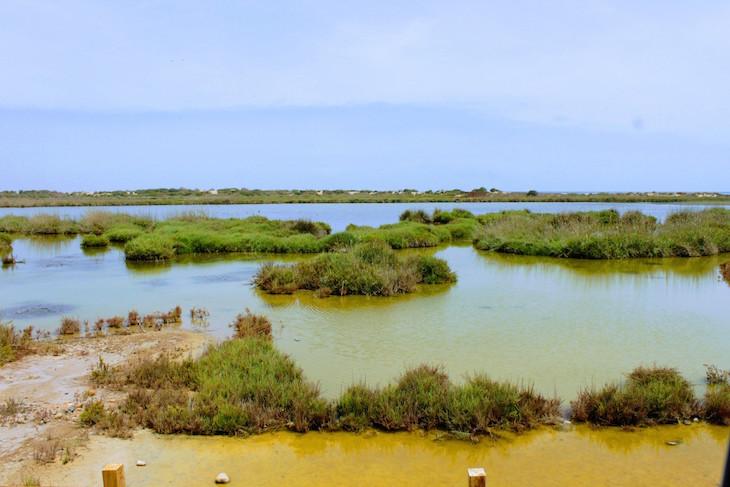 Paisagem protegida - Saidia - Marrocos © Viaje Comigo