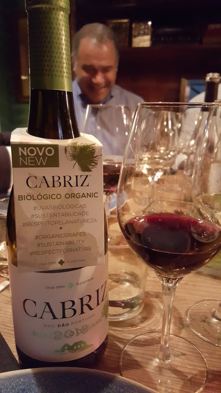 Osvaldo Amado e vinhos Cabriz © Viaje Comigo