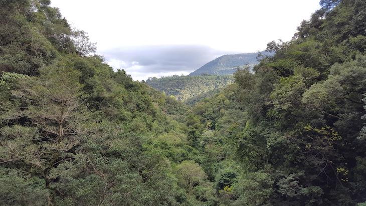 Vista do Alambique Flor do Vale, Canela, Rio Grande do Sul, Brasil