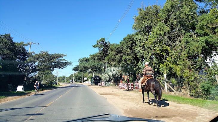 Pelos Caminhos Rurais em Porto Alegre - Brasil © Viaje Comigo