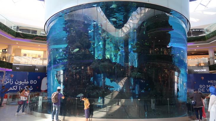Aquário do Morocco Mall, - Casablanca © Viaje Comigo