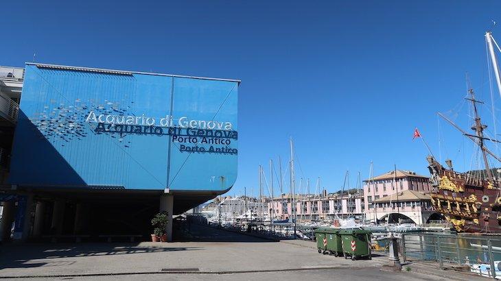 Aquário de Génova - Itália © Viaje Comigo