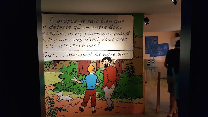 Exposição de Tintin no Château Cheverny - Vale do Loire - França © Viaje Comigo