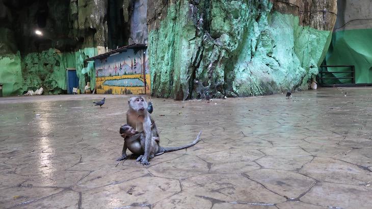 Batu Caves - Malásia © Viaje Comigo