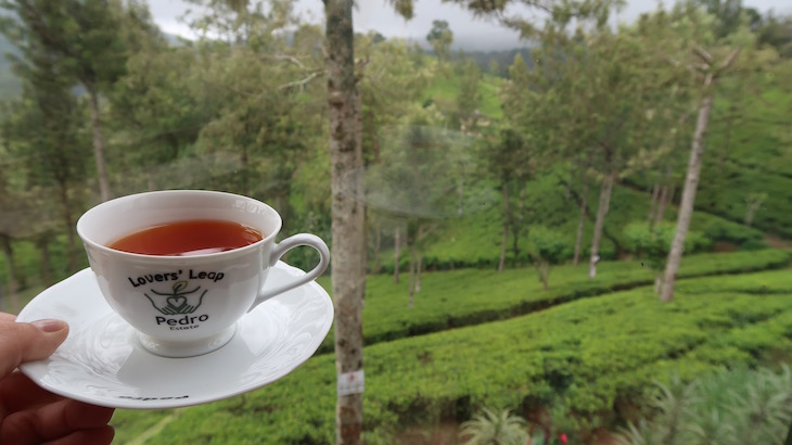 Pedro Estate - Nuwara Eliya - Sri Lanka © Viaje Comigo