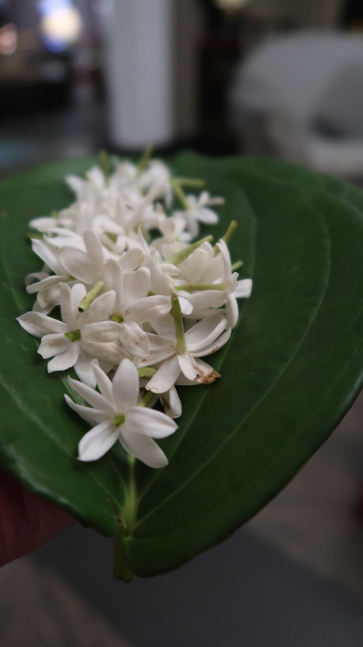 Mahaweli Reach Hotel - Kandy - Sri Lanka © Viaje Comigo