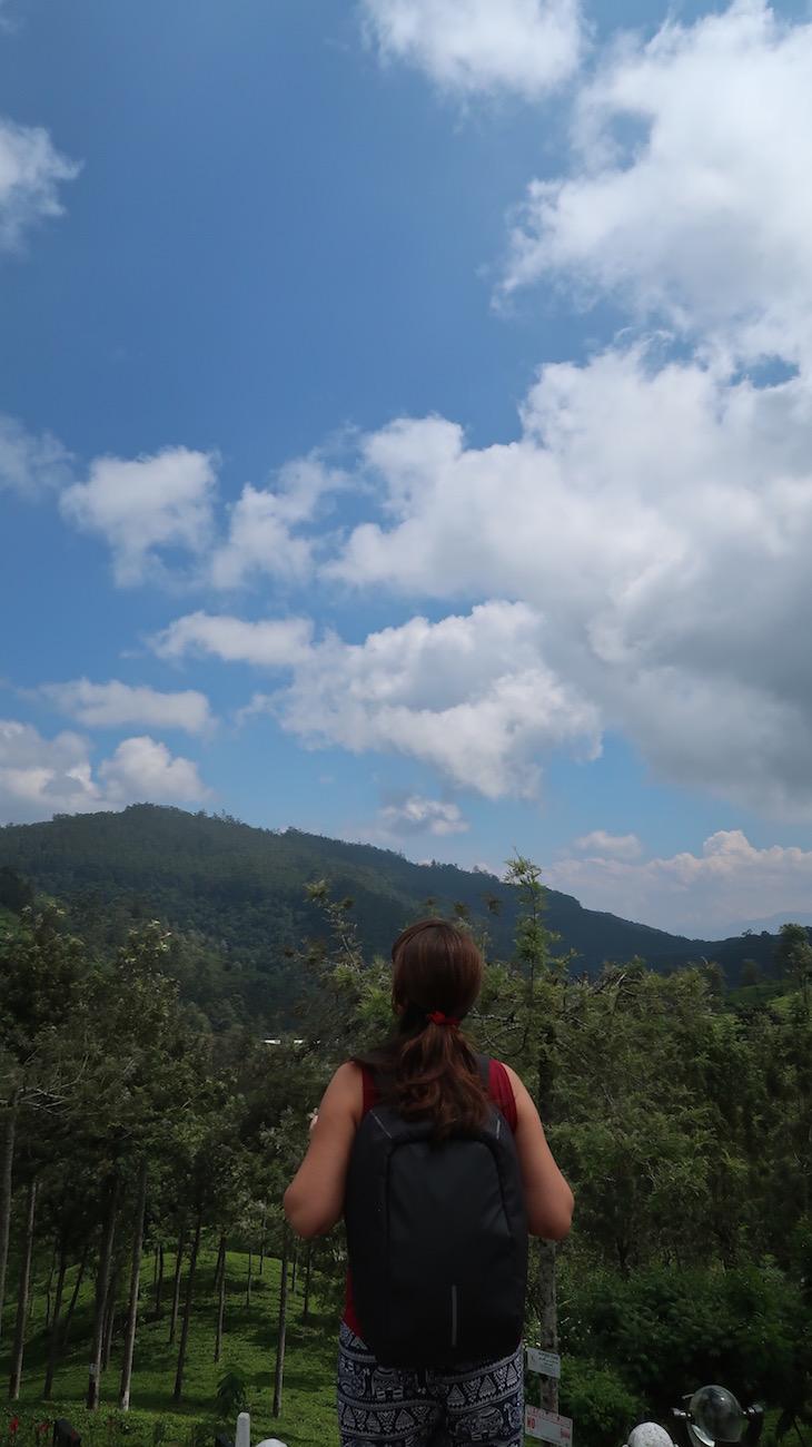 Bavel - Campos de chá do Sri Lanka © Viaje Comigo