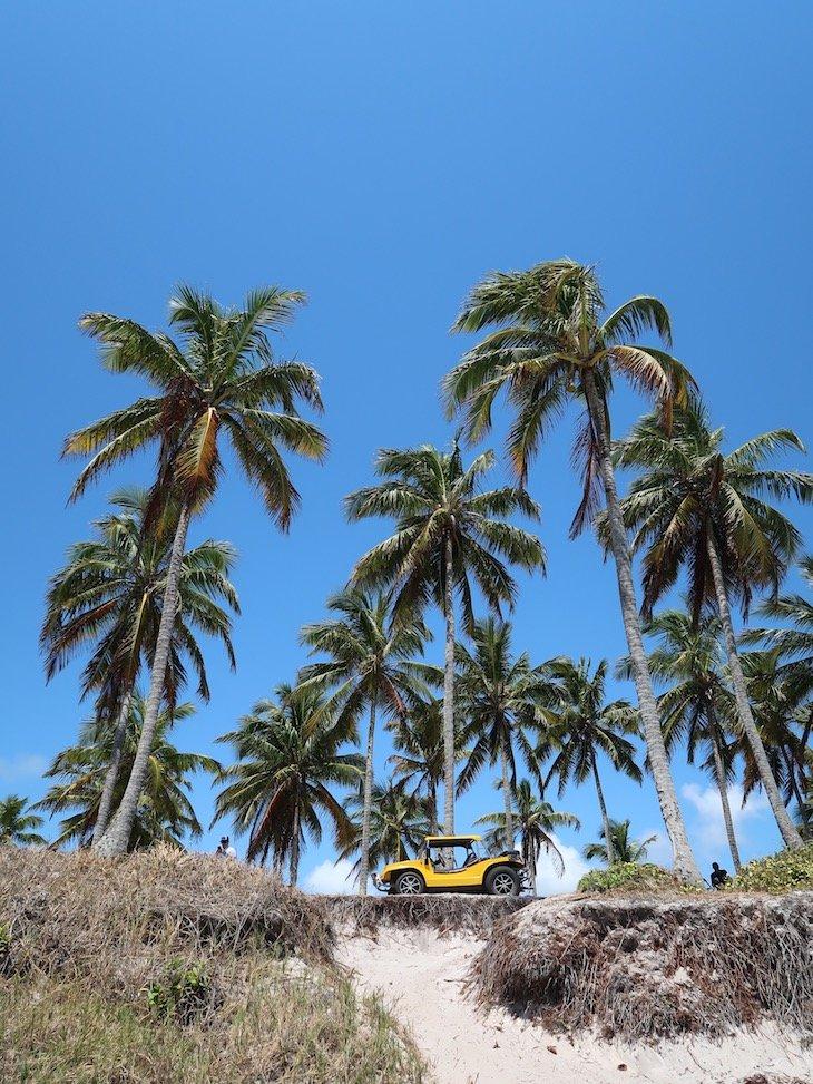 Passeio de buggy em Porto de Galinhas - Brasil © Viaje Comigo